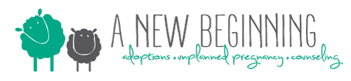 A New Beginning | Infant Adoption Agency